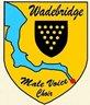 Wadebridge Male Voice Choir