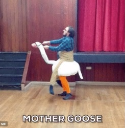 Goose Costume for sale
